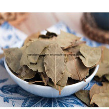 Air Dried Bay Leaves