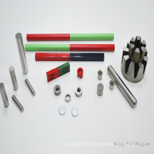 Permanent Sintered Educational AlNiCo Magnet