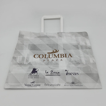 Custom Printed Colorful Kraft Paper Bag