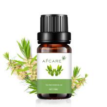 Lavander Essential Oil Lavender Magnolia Natural Oils Organic Pure Set Rosemary Tea Tree Tuberose Aromatic Chamomile Whitening