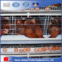 Gaiola da bateria da exploração avícola para pássaros de galinha da franga da grelha de camada