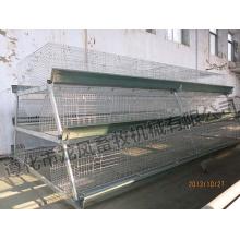Automático um tipo de gaiola do Pullet