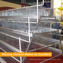Tianrui Advanced Full Automatic A Type Battery Chicken Cage System