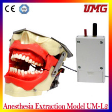 China Dental Products Anesthesia Extraction Model Um-L2