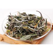 Chá de Peônia Branca de Alta Qualidade