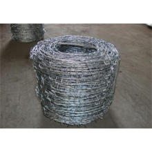 Hot Selling High Quality Galvanized Barbed Wire