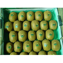 2011 fresh china kiwi fruit with the best price