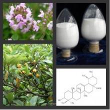 Hochwertige Hautbleichungsmaterialien Organisches Alpha Arbutin