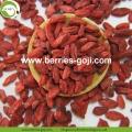 Factory Supply Healthy Dry Fruit Super Food Goji