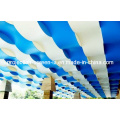 Hot Sell Colorful PVC Stretch Ceiling Film 250d*250d