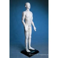 Akupunktur Menschliches Modell