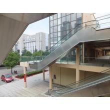 Neues Design Vvvf Bsdun Automatische Rolltreppe China Hersteller