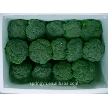 Atacado de vegetais verdes orgânicos IQF brócolis