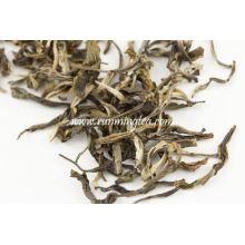 jasmine tea powder