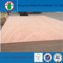 3mm Bintangor Veneer Door Size Plywood for Door Use