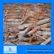 IQF new cooked sea scampi