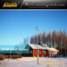 Système hybride solaire de vent 300W