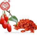 Baya seca de goji berry