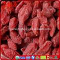 Récolte de 2016 Goji berry avec BRC ISO22000 ISO9000 casher