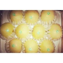 Amarillo brillo de calidad superior Delicious Golden Pear