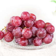 fresh red globe grapes for sale red globe grapes size