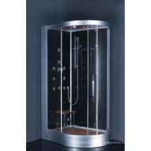 Computer Control Corner Steam Shower Room (DZ966)