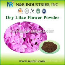 Lilac Powder and Lilac Extract Powder from Lilac flower
