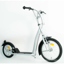 Steel Frame Kick Scooter (PB1612B)
