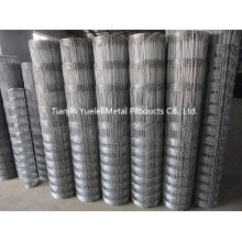 Wire Mesh Netting Used in Construction/Hot Dipped Galvanized Hexagonal Wire Netting/ Hexagonal Wire Mesh Chicken Wire Netting China Anping Factory