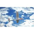 WL Toys F959 RC EPO / RTF-планер Высокоскоростные вертолеты RC вертолета 2.4g