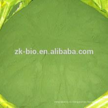Сломанный клеточной стенки хлореллы порошок