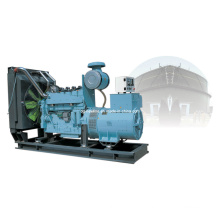Gas Generator Set (NPDYR)