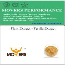 Bom Preço Extrato de plantas de alta qualidade - extrato de perilla