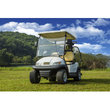 Coche de golf eléctrico de 2 plazas para campo de golf