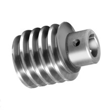 Small Stainless Steel Worm Gear For Elevator