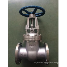 Ss304/Ss316 Flange Gate Valve in with ANSI/API Standard (Z41)