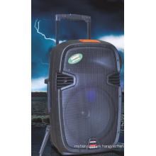 Altavoz exterior 12 pulgadas Louderspeaker con certificado CE (F413)