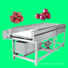 brush type washing machine/equipment/plant/date washing machine/jujube washing machine