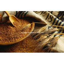 (Bromoethane) -использован в Пестициде Bromoethane