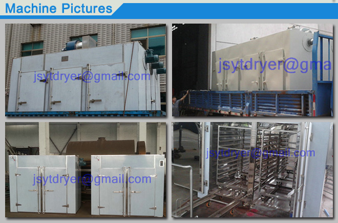 CT-C Hot Air Circulating Oven