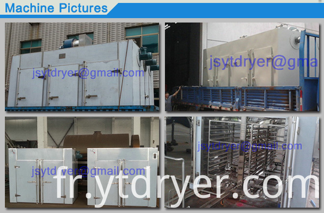 CT-C Series Medlar Drying Oven