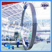 wind turbine slew bearing