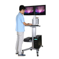 "Mobile Computer Workstation Dual Monitors 10-24"" Height Adjustment (PC 1602BS)"
