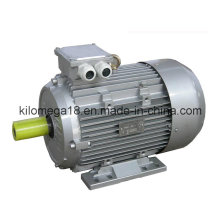 Y2 Series 3-Phase Asynchronous Electric Motors 0.75kw-280kw