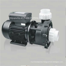 Effective and Economical Swimming Pool Water Pump