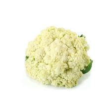 Chou-fleur congelé de haute qualité