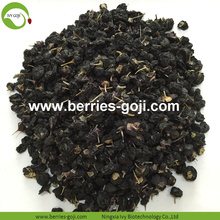 Pabrik Hot Sale Kering Liar Black Wolfberry