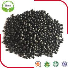 Poudre noire organique de soja de poudre de soja de noir de Non-GMO