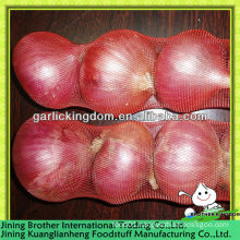 3-4pcs small packing China red onion