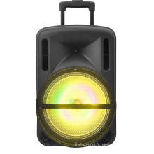 Haut-parleur portatif de hayon de 12 pouces W / USB / SD dans / FM / Bluetooth F12-1